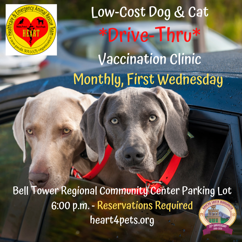 Low-Cost Dog Cat Vaccination Clinic graphic