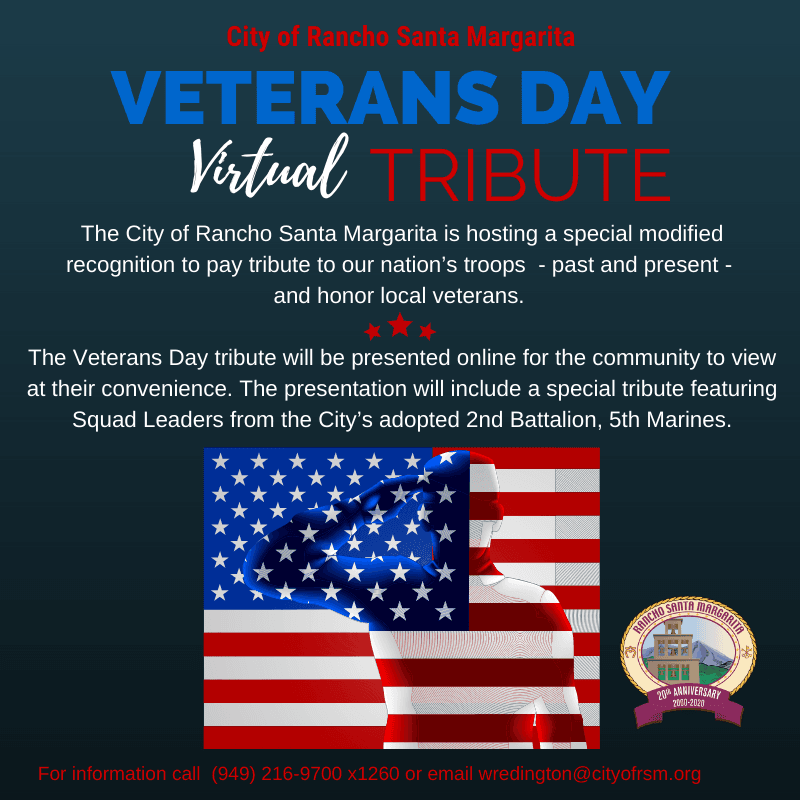 Veterans Day 2020 graphic